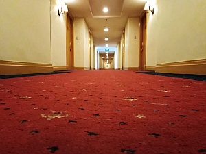 Commercial Cleaning Carpet Cleaning Nambour Sunshine Coast