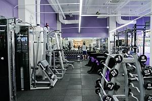 Gym Sports Hall